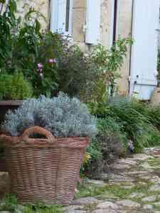 les-contreforts-pondaurat-jardin-la-bella-bordeaux
