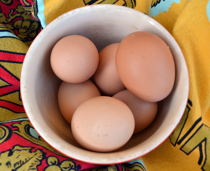 Only the freshest eggs for Deviled Eggs with Anchovy | labellasorella.com