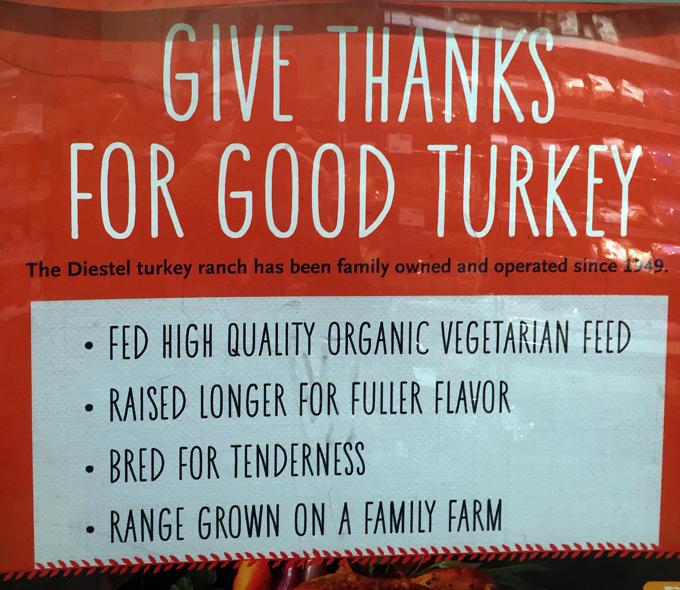 All the qualities a Thanksgiving turkey should have | labellasorella.com