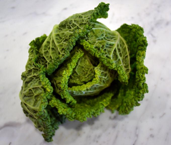 Tiny spring Savoy Cabbage | labellasorella.com