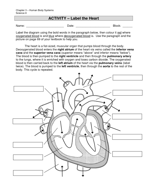 small resolution of heart diagram to label printable free download heart diagram without labels heart diagram without labels human heart diagram no labels human heart diagram