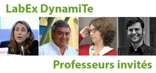 Professeurs invités