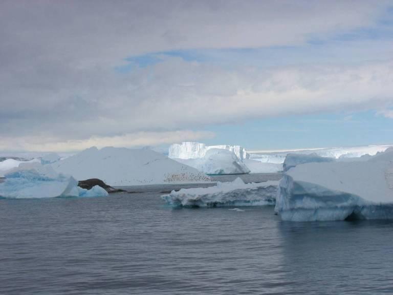 Antartide, il motore della vita degli oceani