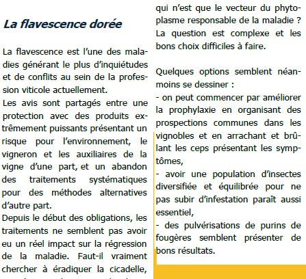 Fiches flavescence