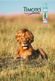 funny hair products slogans love