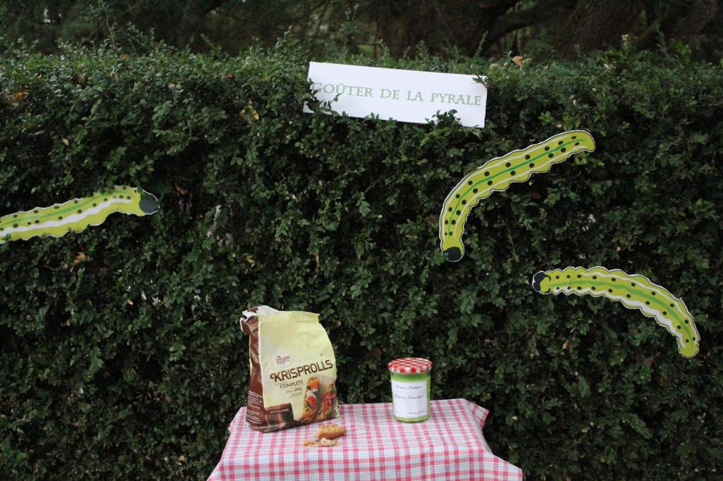 curry-de-légumes-campagnart-8.jpg