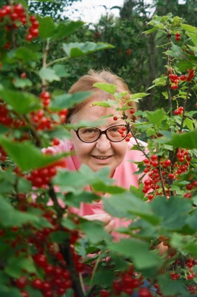 in-the-berries