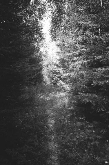 light-passage