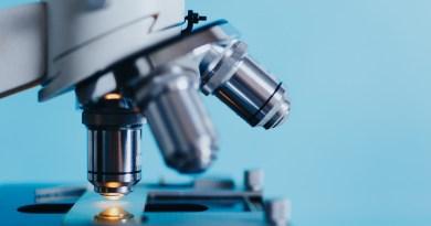 Japón probará células iPS para tratar lesiones de médula espinal