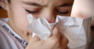 La OMS lanza una nueva estrategia mundial contra la influenza