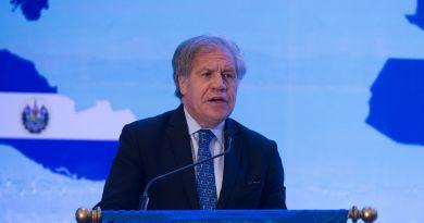 """Almagro considera """"discriminatorio"""" impedir a Evo Morales optar a reelección"""