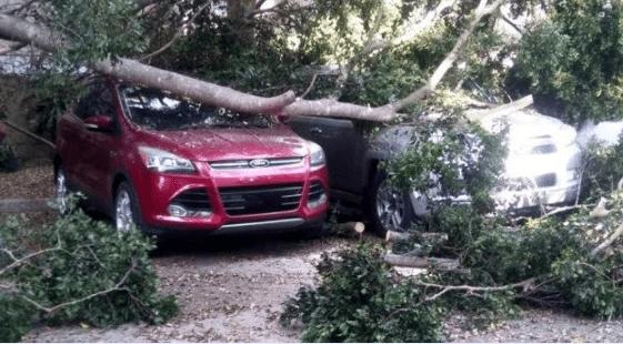Ventarrones afectan Santiago y provocan daños al menos a dos vehículos