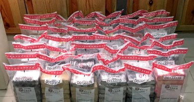 Incautan 253 paquetes de cocaína en un contenedor en el Puerto Caucedo