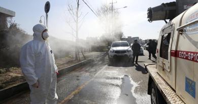 Corea del Sur sacrifica a 19 millones de aves tras un brote de gripe aviar