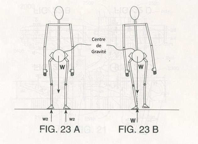 BIOMECANIQUE-SKI : La Pronation et la biomécanique du contrôle de la prise de carre