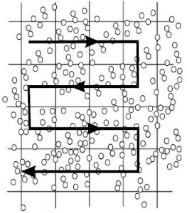 Manual Cell Counting With Neubauer Chamber