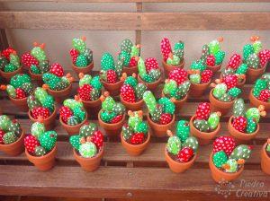 cactus para casas sin niños