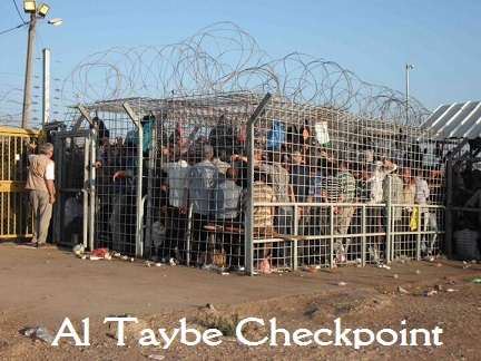 al-taybe-cage3