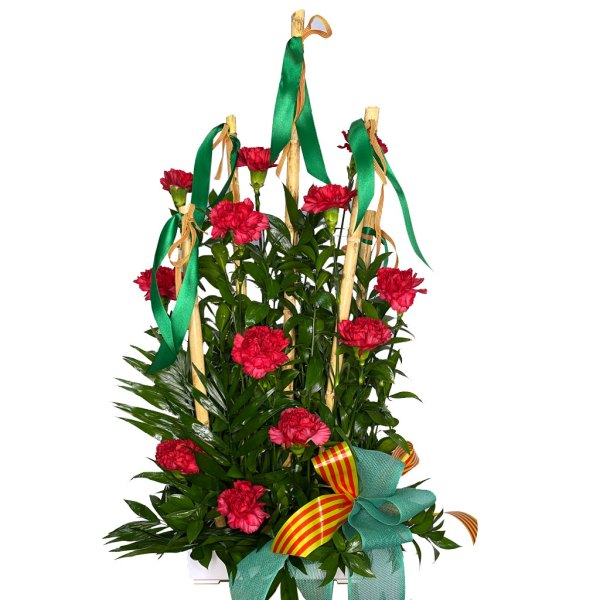 centro de flore magdalena festa plena