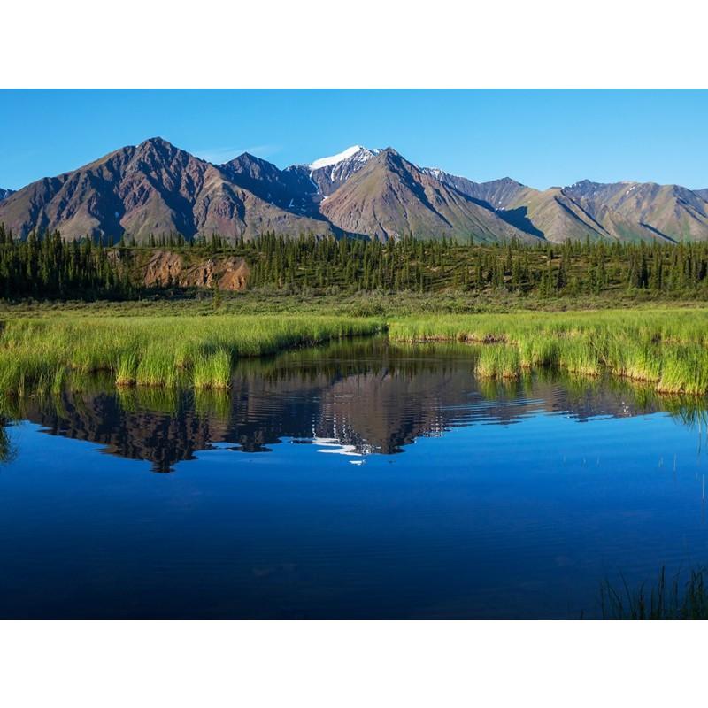 papier peint photo panoramique personnalis paysage montagne enneige et la fort  Papier peint