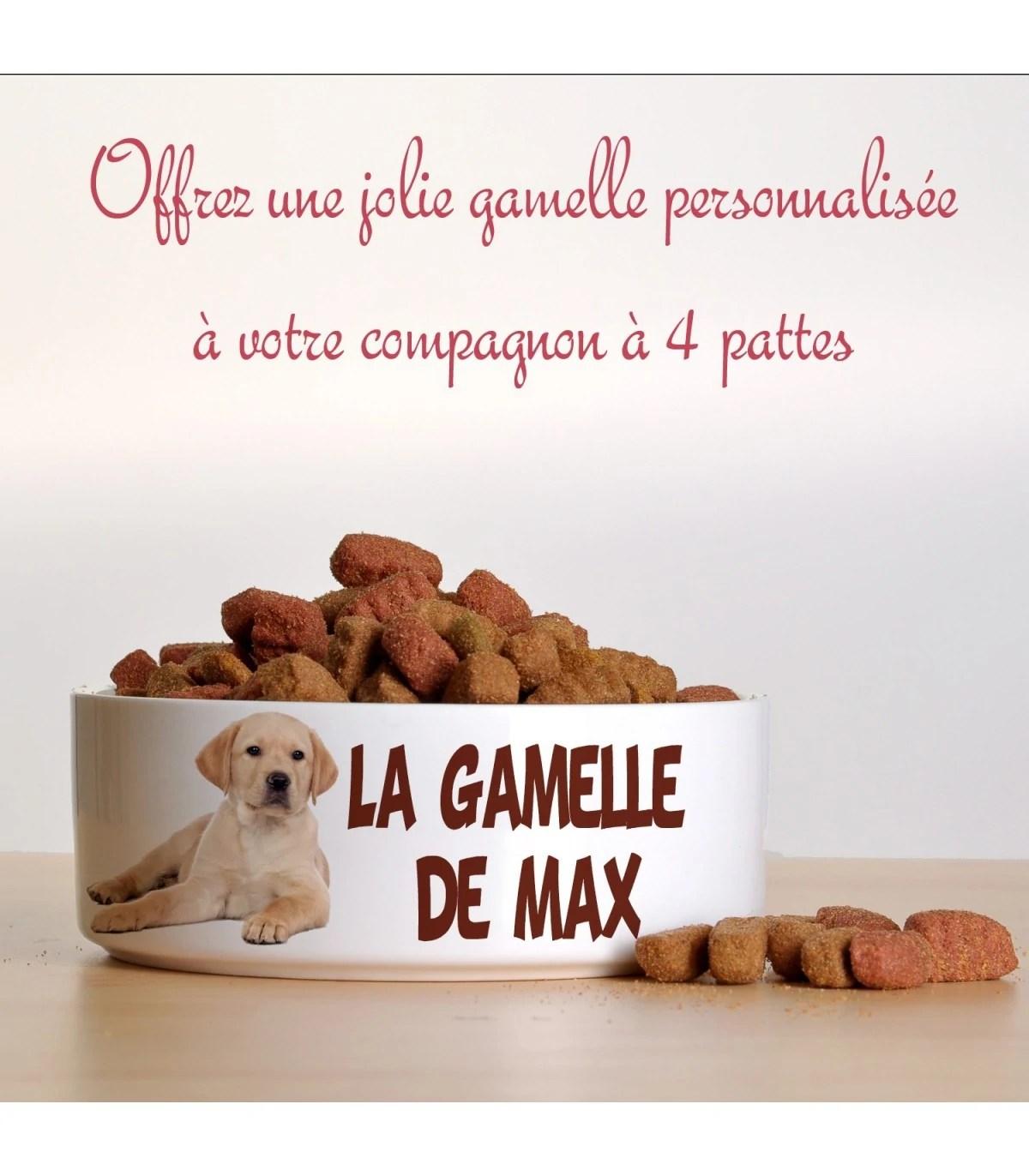 https laboutiquekdo com cadeau chien chat et animaux 3112 gamelle chien et chat avec photo html