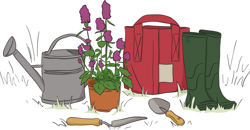 illustration-la-box-a-planter