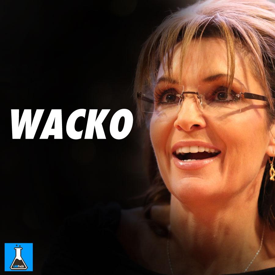 Hilarious Meme NAILS Why Democrats Hate Sarah Palin So Much  |Sarah Palin Meme