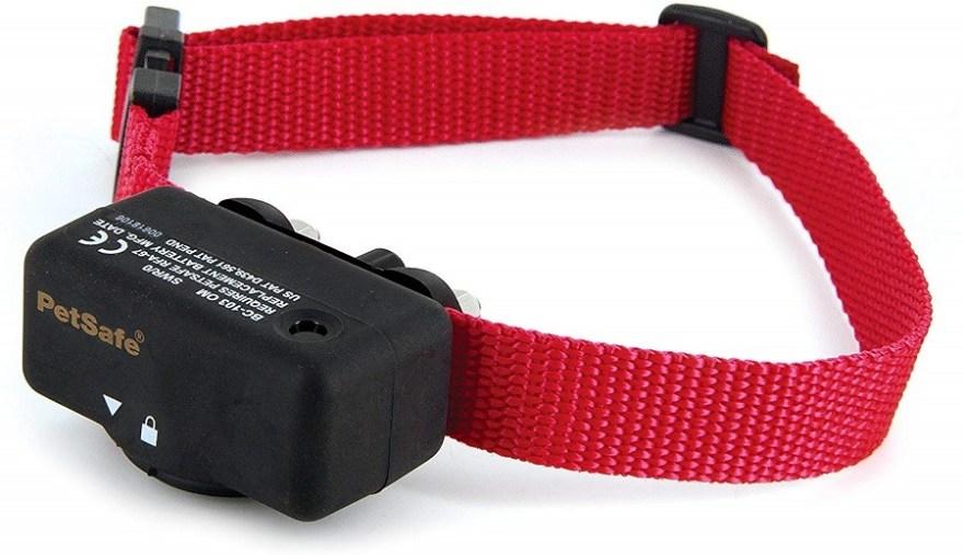 Best Bark Collar For Labradoodles