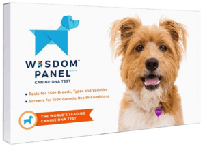 best dna test for mutts