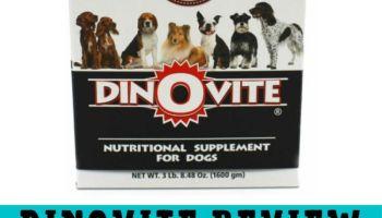 Dinovite Reviews - Dinovite For Dogs