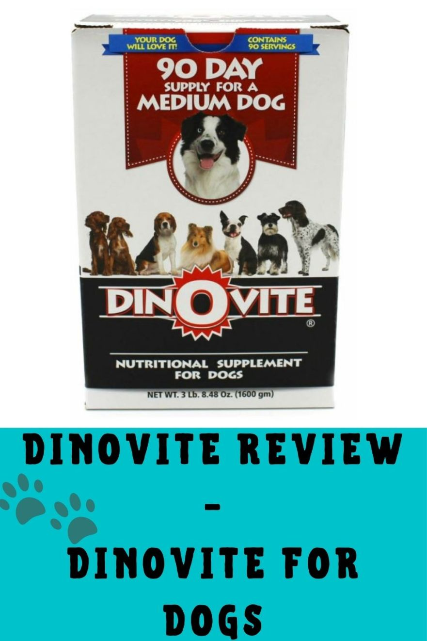 Dinovite Reviews - Dinovite For Dogs