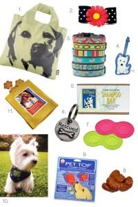 Australian Labradoodle Shopping  Modern Dog Magazine's