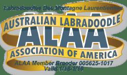 Labradoodles Des Montagne Laurentiennes ALAA International Logo