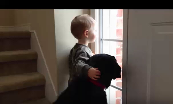 a-little-boy-and-a-sad-black-labrador
