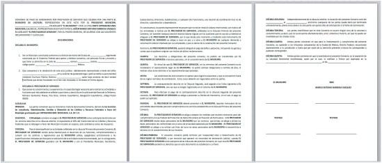 documento Pemex machote contrato