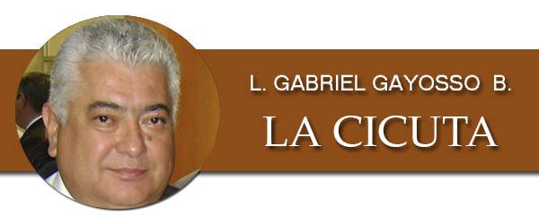 l-gabriel-gayosso-berman