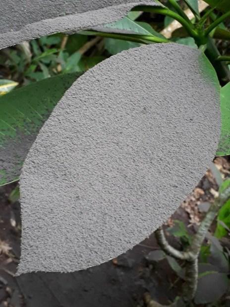 Volcan Agung-11