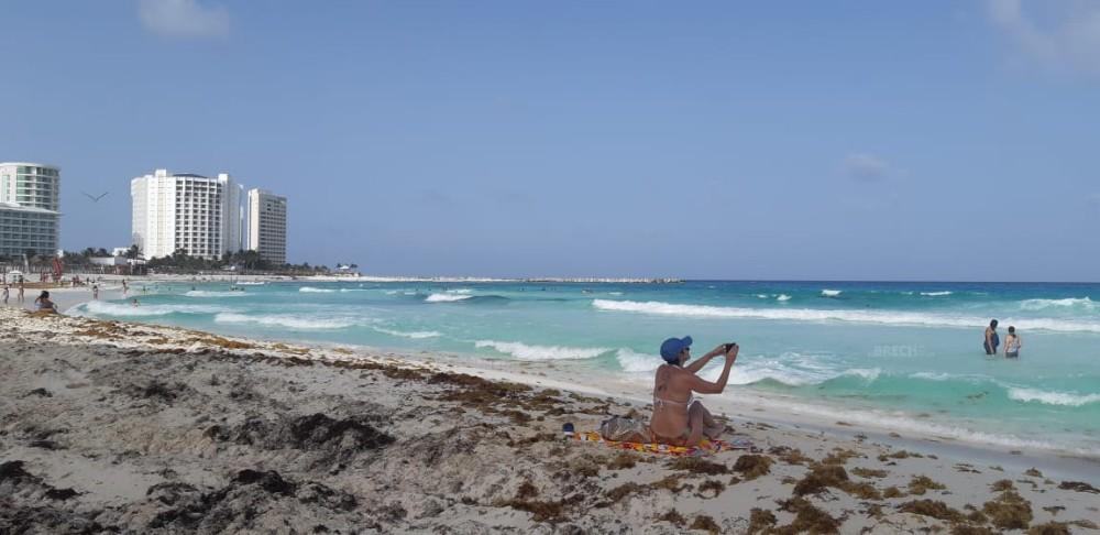 Sargazo en Quintana Roo 5