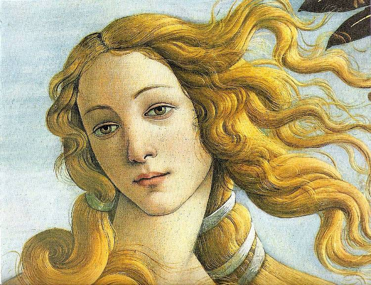 Simonetta Vespucci, the muse who was a model both for Botticelli and many others, died at the age of 23