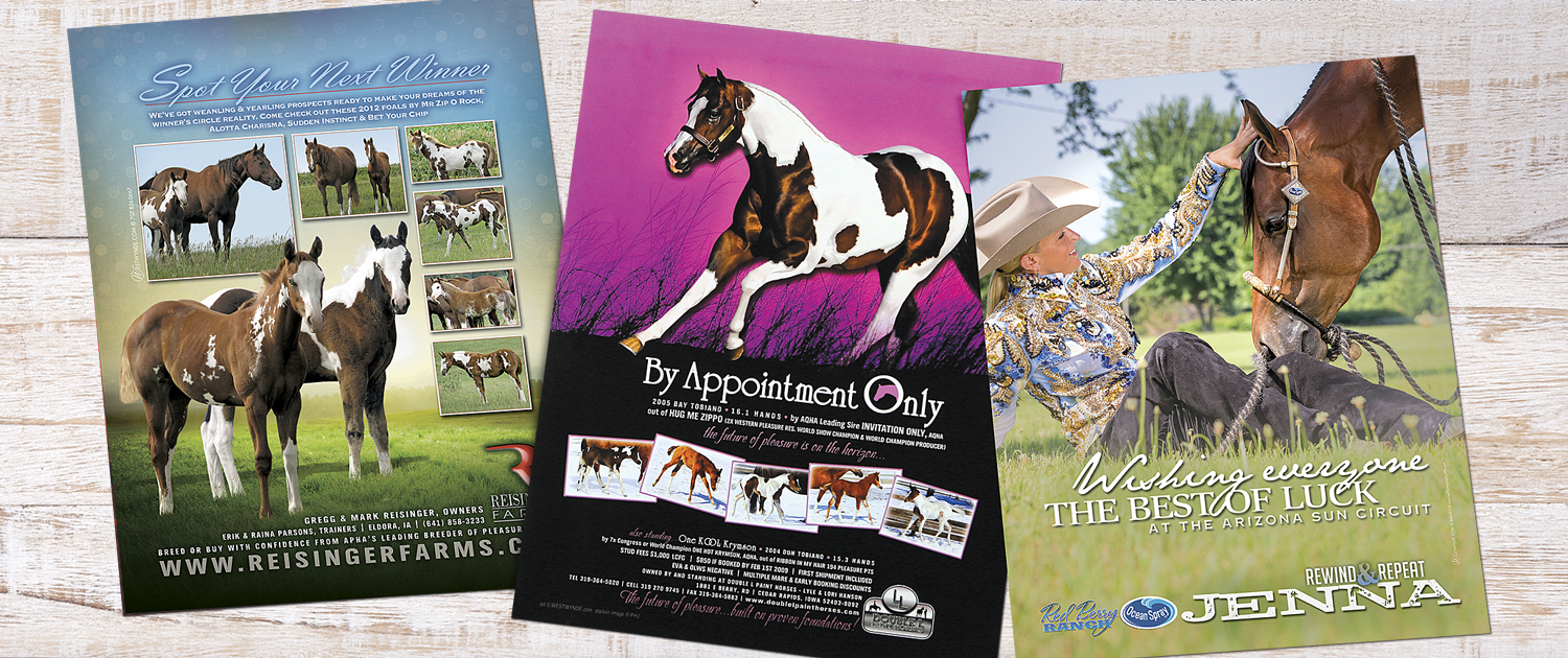Equine Ad Samples