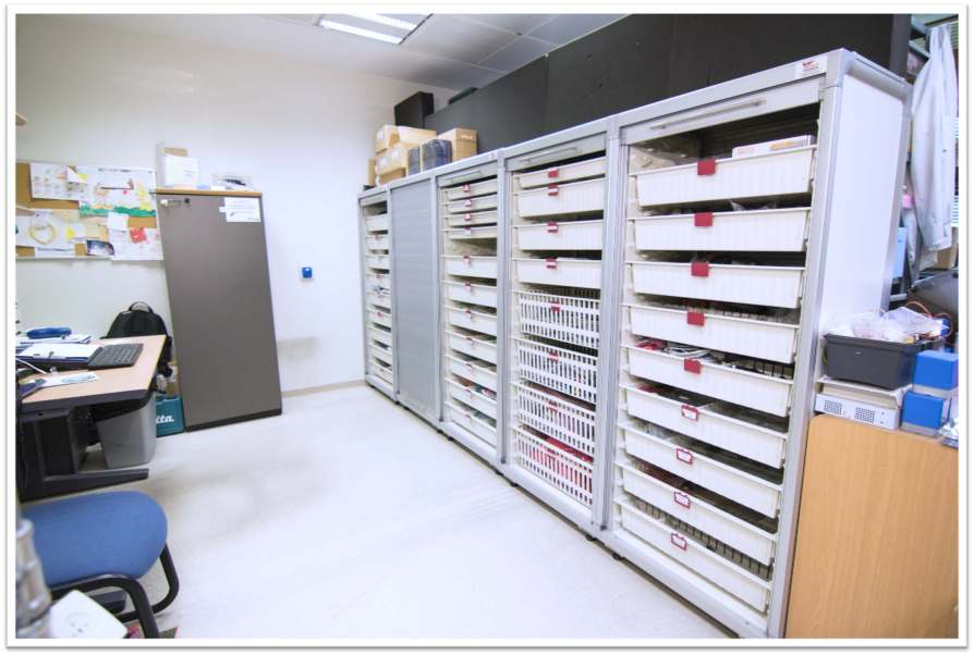 Hospital Sterile Storage Rack tambour doors