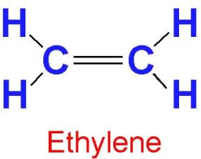 Image result for ethylene