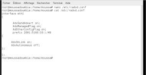 Configuration serveur DHCPv6, DNS sous IPv6