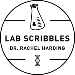 Lab Scribbles - Real-time open access science