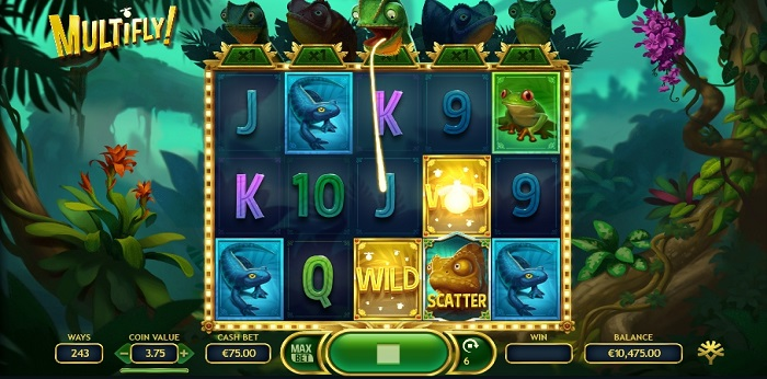 Multifly online slot game wilds
