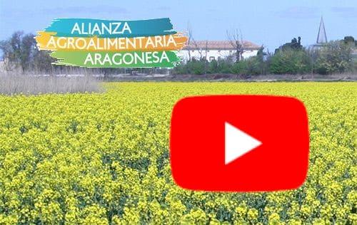 La Alianza Agroalimentaria Aragonesa estrena canal en Youtube
