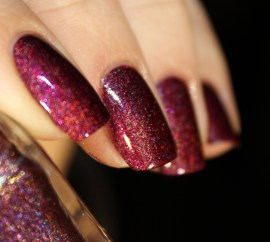 picture polish-moscow (2)