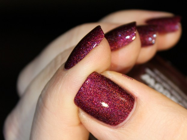 picture polish-moscow (3)