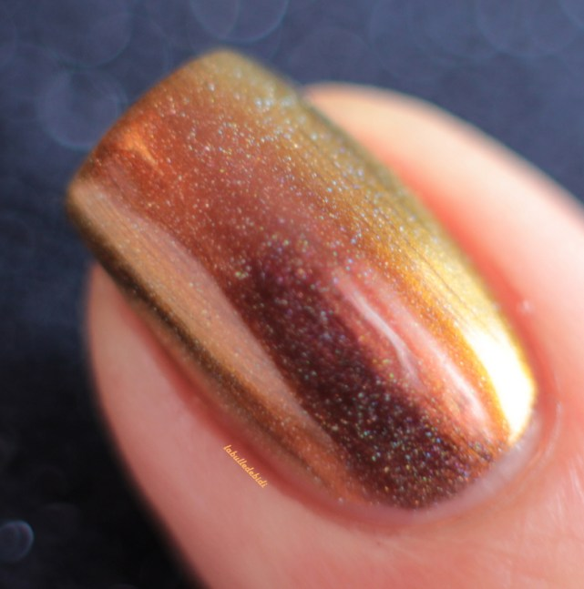 ilnp-abundance(H)-spring collection 2015 (7)