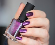 ilnp-poetry-spring collection 2015 (9)